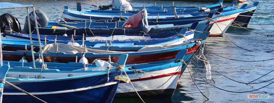Typiska träbåtar
